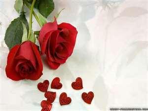 عکس عاشقانه گل زیبا و جدید
