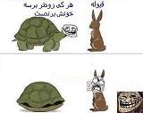 عکس ترول قشنگ- مسابقه خرگوش و لاکپشت