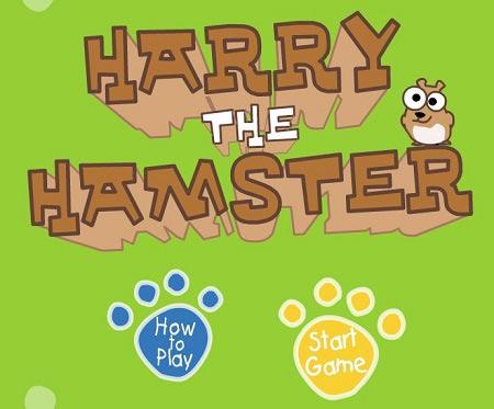 بازی فکری نجات همستر harry the hamster