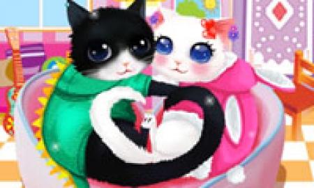 دانلود  بازی گربه های ملوس